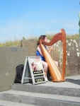 We had live music to narrate our walk on the Cliffs of Moher!